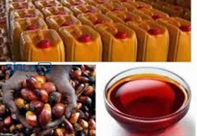 palm-oil-red-oil-big-3