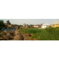 2-plots-of-land-for-sale-small-1