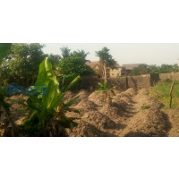 2-plots-of-land-for-sale-small-0