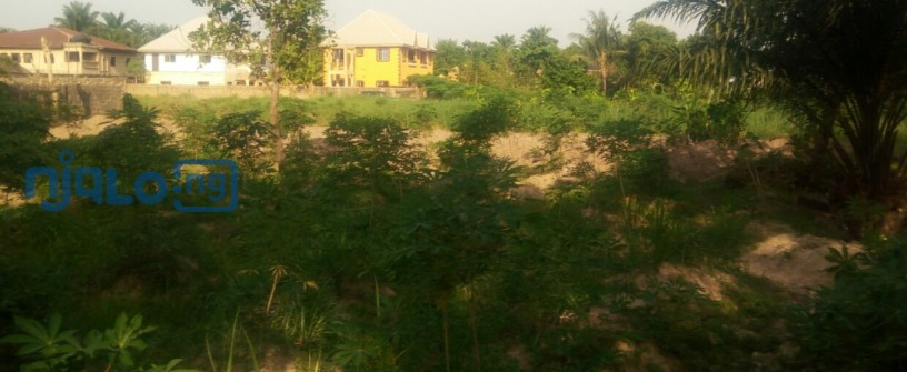 2-plots-of-land-for-sale-big-2