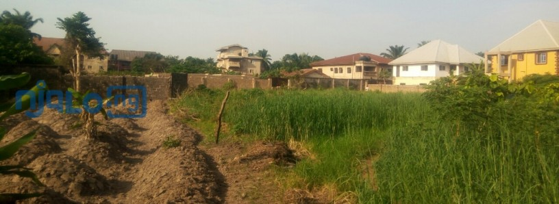 2-plots-of-land-for-sale-big-1