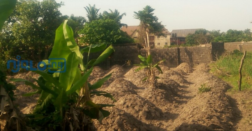 2-plots-of-land-for-sale-big-0