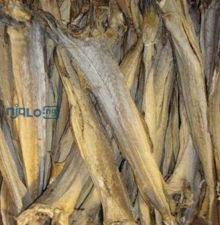 dried-stock-fish-big-1