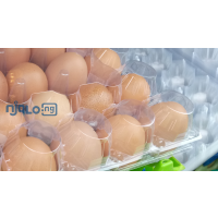 fresh-table-eggs-and-30-holes-transparent-egg-crates-small-1