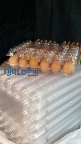 fresh-table-eggs-and-30-holes-transparent-egg-crates-big-4