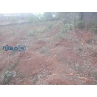 large-expanse-of-land-for-sale-small-0