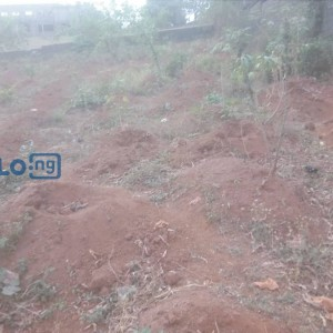 LARGE EXPANSE OF LAND FOR SALE