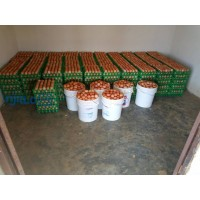 fresh-poultry-eggs-small-2