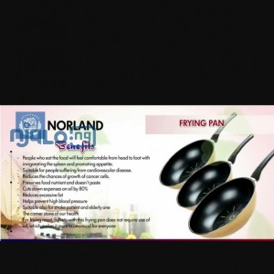 Norland Magic Frying Pan